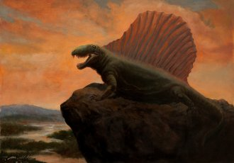 dimetrodon-sp