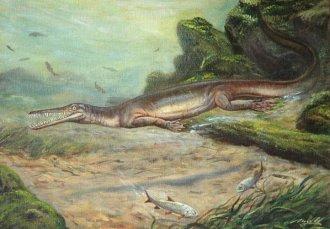 Mesosaurus tenuidens