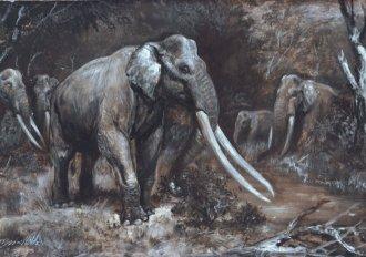 palaeoloxodon-antiquus