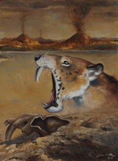 savlozuby-tygr